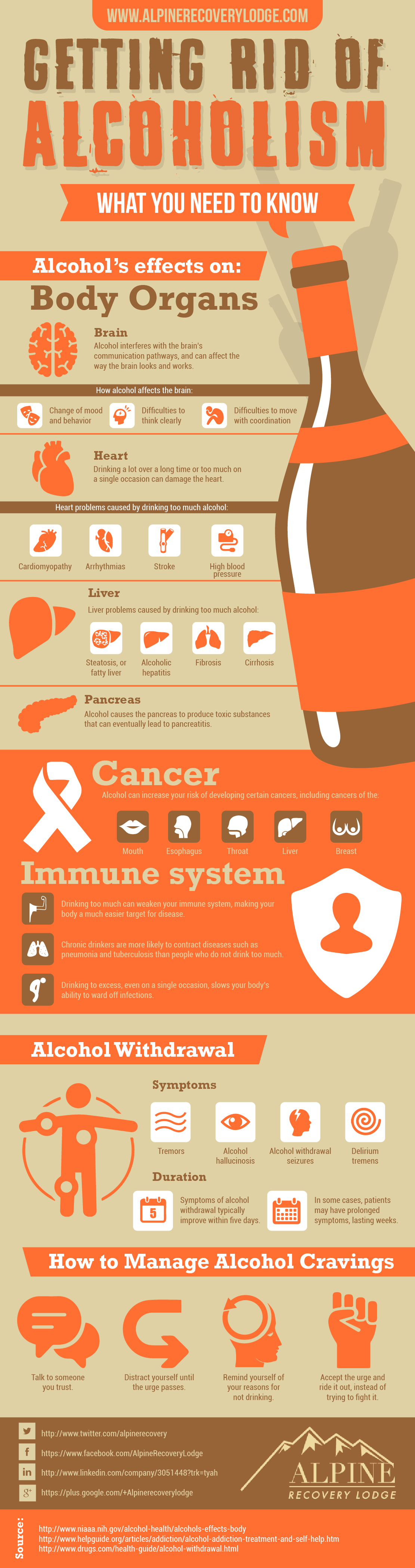Effects of Alcoholism on the Body Infographics